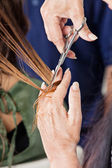 Hairdresser Cutting Female Client's Hair — Stock Photo