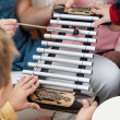 Teacher And Students Playing Xylophone In Class — Stock Photo #25793857