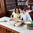 Schoolgirl Showing Book To Classmate In Library — Stock Photo #27176579