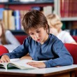 Stock Photo: Schoolboy Reading Book At Table In Library