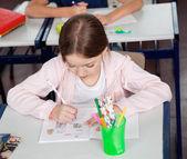 Schoolgirl Drawing At Desk In Classroom — Stock Photo