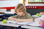 Школьник записи на книги в классе — Стоковое фото