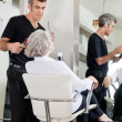 Hairdresser Attending Woman At Salon — Stock Photo