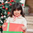 Cute Girl Holding Gift — Stock Photo