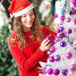 Owner Decorating Christmas Tree — Stock Photo