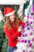 所有者装饰圣诞树 — Stock fotografie