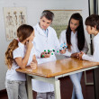 Teacher Explaining Molecular Structures To Students — Stock Photo #32022979