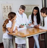 Teacher Explaining Molecular Structures To Students — Stock Photo