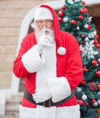 Noel baba noel ağacına dudaklarında parmak — Stok fotoğraf