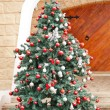 Christmas Tree In Front Of House — Stock Photo #33109637