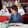 Schoolboy Studying In Library — Stock Photo