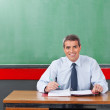 Confident Male Teacher With Pen And Binder Sitting At Desk — Stock Photo #33208771