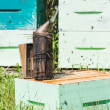 Stock Photo: Bee Smoker At Apiary