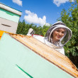 Female Beekeeper Working With Colleague At Apiary — Foto Stock