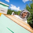 Female Beekeeper Working With Colleague At Apiary — Stock Photo #33349321