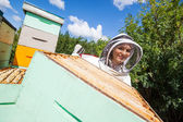 Female Beekeeper Working With Colleague At Apiary — Stock Photo