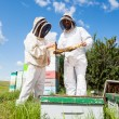 Beekeepers Working At Apiary — 图库照片