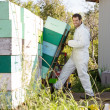 Beekeeper Smiling While Loading Stacked Honeycomb Crates In Truc — Stock Photo