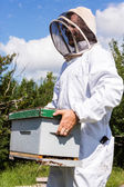 Beekeeper Carrying Honeycomb Box — Stock Photo