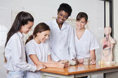 Teenage Schoolgirls With Teacher Analyzing Stones — Stock Photo