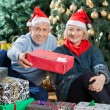 Portrait Of Senior Couple Offering Present In Christmas Store — Stock Photo