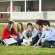 Students Sitting Together On Grass At University Campus — Stock Photo