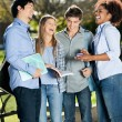 Happy Students Standing In Campus — Stock Photo