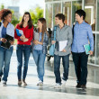 Students Walking Together On College Campus — Stock Photo