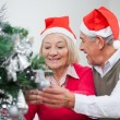 Senior Couple Decorating Christmas Tree — Stock Photo #33921365