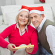 Smiling Senior Couple With Christmas Present — Stock Photo #33924111