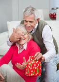 Starší muž pokrývající ženské oči zároveň dává vánoční dárek — Stock fotografie