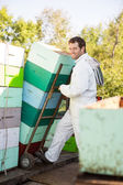 Beekeeper Smiling While Stacking Honeycomb Crates In Truck — Stock Photo