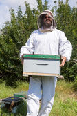 Male Beekeeper Carrying Honeycomb Box — Stock Photo