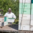 Stock Photo: Beekeeper Loading Honeycomb Crate In Truck