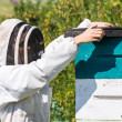 Beekeeper With Fume Board — Stock Photo #33999219
