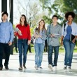 Confident Students Walking In A Row On Campus — Stock Photo