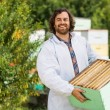 Male Beekeeper Carrying Crate Full Of Honeycombs — Stock Photo #34006767