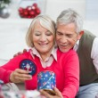 Happy Senior Couple Looking At Christmas Gift — Stok fotoğraf
