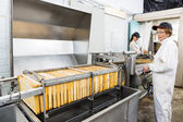 Female Beekeeper Operating Honey Extraction Plant — Stock Photo