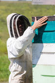 Female Beekeeper Working At Apiary — Stock Photo