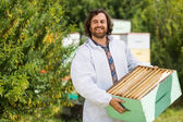 Male Beekeeper Carrying Crate Full Of Honeycombs — Stock Photo