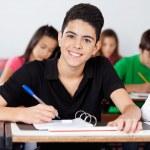 Teenage Schoolboy Writing In Binder At Desk — Stock Photo #34069213