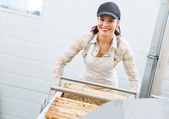 Happy Beekeeper Working In Factory — Stock Photo
