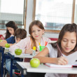 Schoolgirl Sitting At Desk With Classmates In A Row — Stock Photo