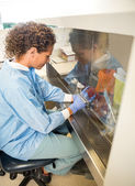 Researcher Experimenting In Laboratory — Foto Stock