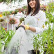 Smiling Florist Watering Plants In Greenhouse — Stockfoto