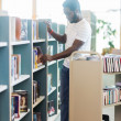 Librarian Arranging Books In Shelf At Library — Foto Stock