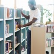 Librarian Arranging Books In Shelf At Library — Stockfoto