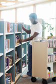 Librarian Arranging Books In Shelf At Library — Stock Photo