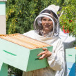 Portrait Of Beekeeper Working At Apiary — Stock Photo #35789857